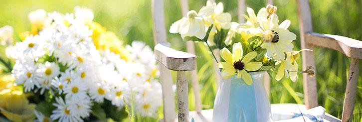 Kraftort Garten – neue Energie tanken in freier Natur